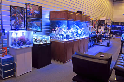fish tank maintenance denver to denver and denver city